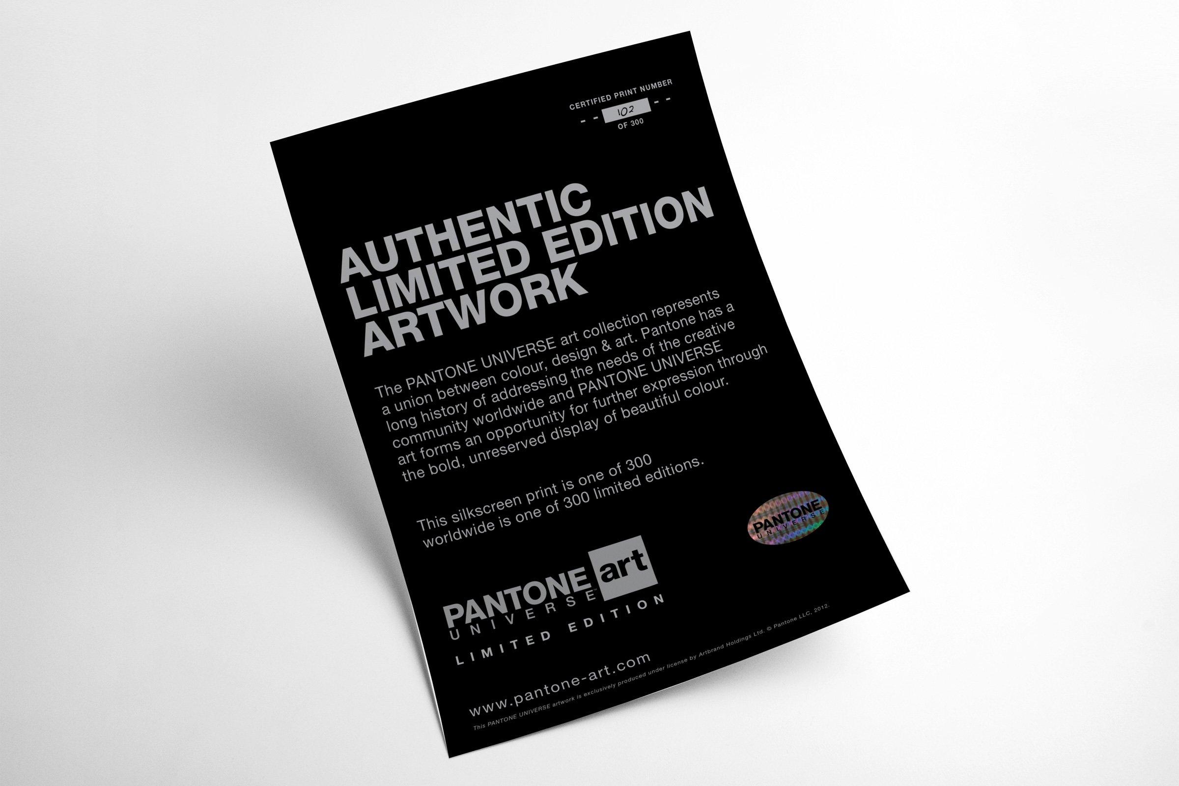 pantone-art-certificate